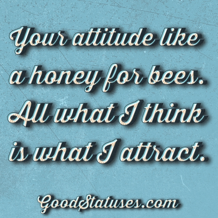 Best Attitude status for WhatsApp: My attitude as honey for bees and
