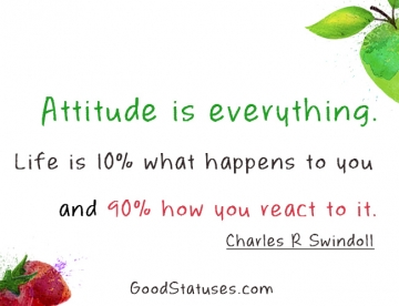 Attitude Status: Attitude is everything. Life is 10% and How you react is 90%